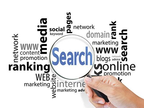 Buzzin Search & Keyword Ranking